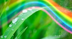 Regenbogenbild1_06