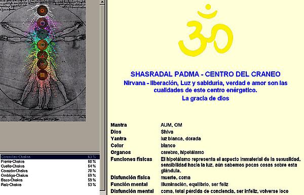 Software de los chakras
